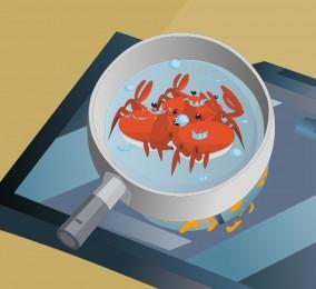 秒懂:蟹类毒素