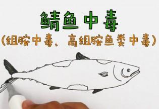 食品有意思:鲭鱼中毒是怎么回事?