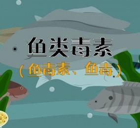 科普视频:吃鱼也中毒?(秒懂鱼类毒素)