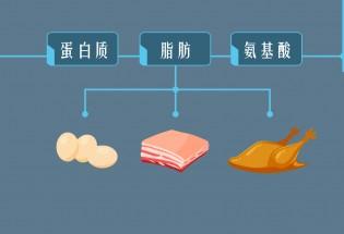 食品有意思:隐藏在美味后的隐患—N-亚硝基化合物