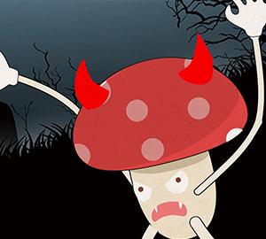 路边的蘑菇别乱采