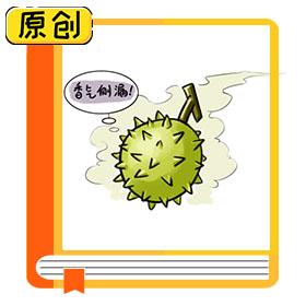 科普漫画:榴莲怎么挑选? (4)