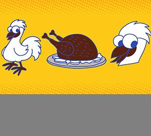 科普视频:乌鸡为什么一身黑?
