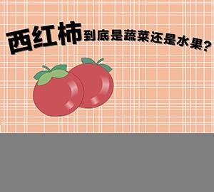 西红柿到底是蔬菜还是水果?