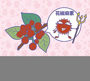 科普视频:花椒为什么那么麻?(匹配百科词条:花椒、花椒麻素)