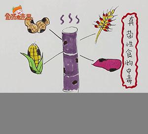 大福说:真菌性食物中毒