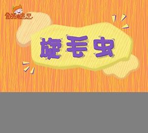 科普视频:吃肉要小心旋毛虫