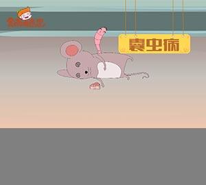 科普视频:可怕的猪囊尾蚴病!